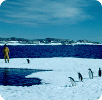 SABEL-antarctic-rnd.jpg